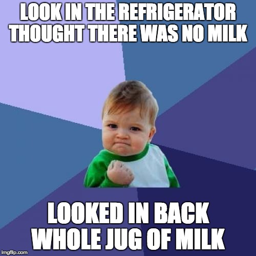 Success Kid Meme | LOOK IN THE REFRIGERATOR THOUGHT THERE WAS NO MILK LOOKED IN BACK WHOLE JUG OF MILK | image tagged in memes,success kid | made w/ Imgflip meme maker