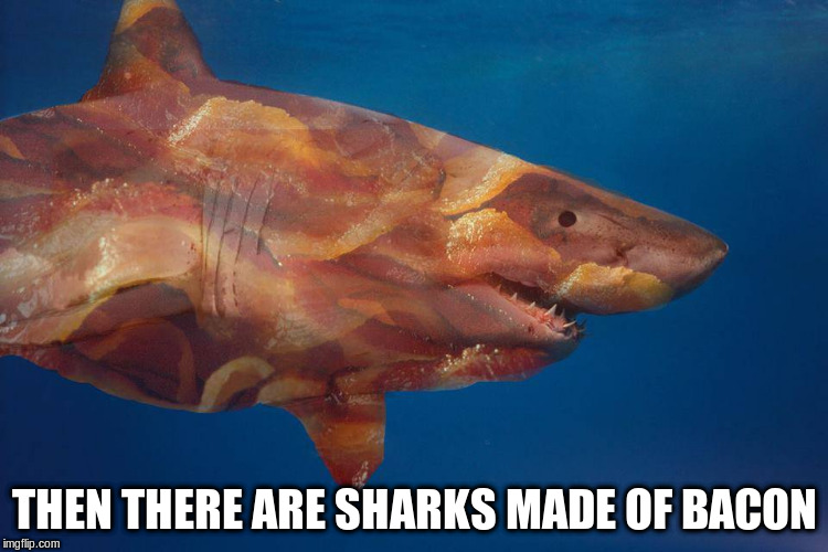 THEN THERE ARE SHARKS MADE OF BACON | made w/ Imgflip meme maker