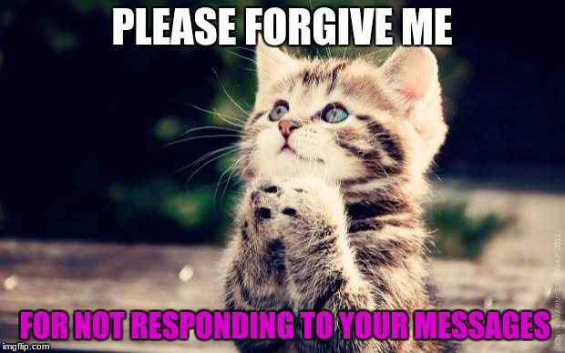 Cute Kitty | PLEASE FORGIVE ME FOR NOT RESPONDING TO YOUR MESSAGES | image tagged in cute kitty | made w/ Imgflip meme maker