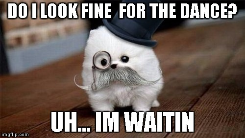 Monocle DOG | DO I LOOK FINE  FOR THE DANCE? UH... IM WAITIN | image tagged in dance,memes,funny,monicle,dog | made w/ Imgflip meme maker