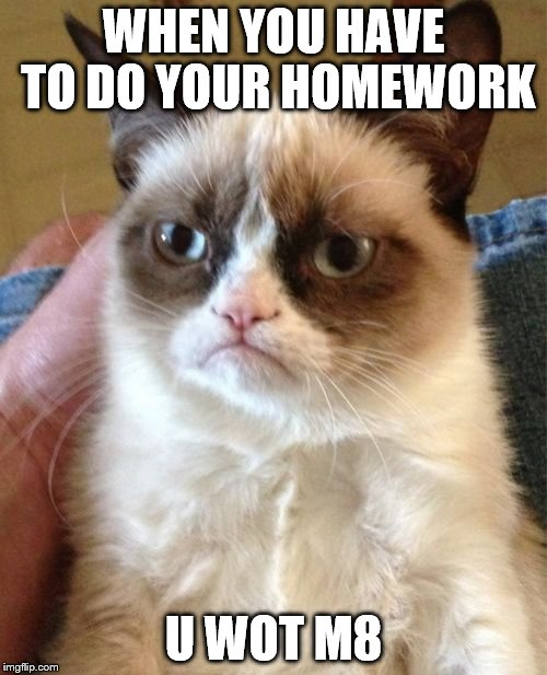 Grumpy Cat Meme | WHEN YOU HAVE TO DO YOUR HOMEWORK U WOT M8 | image tagged in memes,grumpy cat | made w/ Imgflip meme maker