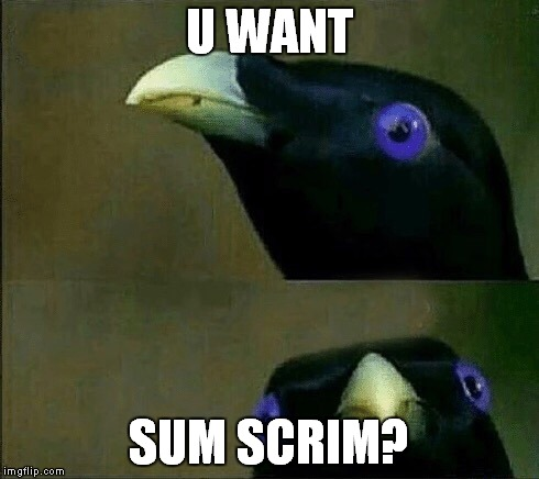U WANT SUM SCRIM? | image tagged in you want sum fuk | made w/ Imgflip meme maker