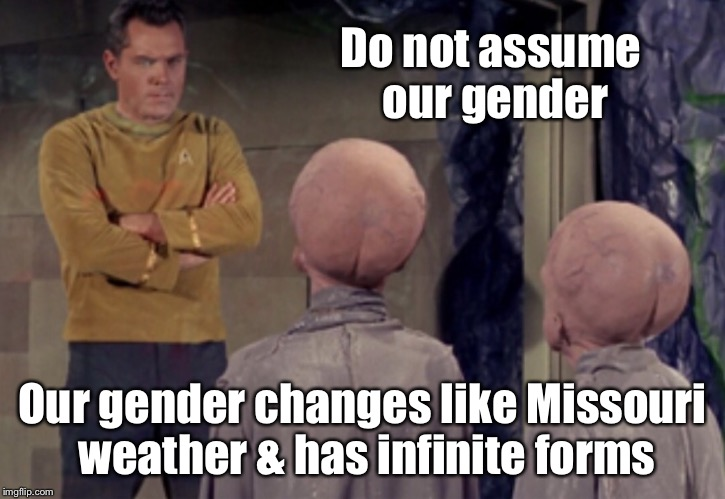 Star Trek Aliens | Do not assume our gender Our gender changes like Missouri weather & has infinite forms | image tagged in star trek aliens | made w/ Imgflip meme maker