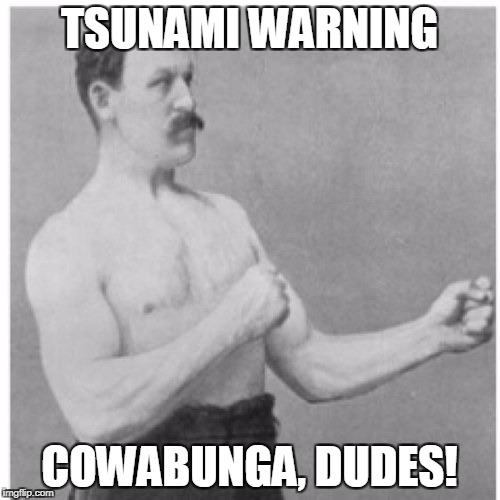 Overly Manly Man Meme | TSUNAMI WARNING COWABUNGA, DUDES! | image tagged in memes,overly manly man | made w/ Imgflip meme maker