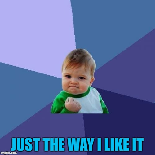 Success Kid Meme | JUST THE WAY I LIKE IT | image tagged in memes,success kid | made w/ Imgflip meme maker