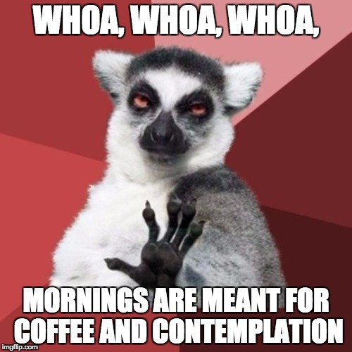 Chill Out Lemur Meme | WHOA, WHOA, WHOA, MORNINGS ARE MEANT FOR COFFEE AND CONTEMPLATION | image tagged in memes,chill out lemur | made w/ Imgflip meme maker