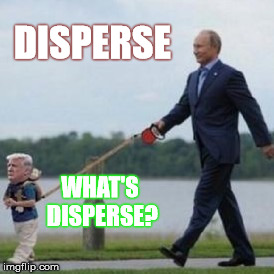 DISPERSE WHAT'S DISPERSE? | made w/ Imgflip meme maker