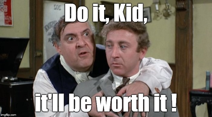 Bialistock & Bloom | Do it, Kid, it'll be worth it ! | image tagged in bialistock  bloom | made w/ Imgflip meme maker