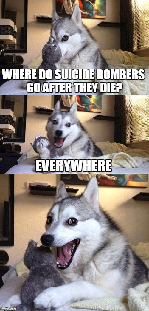 Bad Pun Dog Meme | WHERE DO SUICIDE BOMBERS GO AFTER THEY DIE? EVERYWHERE | image tagged in memes,bad pun dog | made w/ Imgflip meme maker