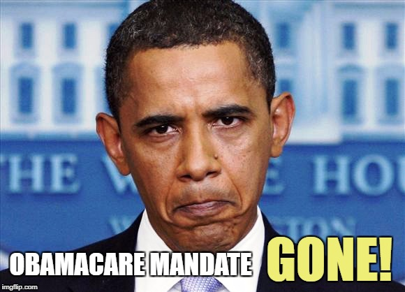 The IRS is no longer going to PUNISH you for not having health insurance. | OBAMACARE MANDATE GONE! | image tagged in trump,obamacare,memes | made w/ Imgflip meme maker