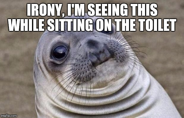 Awkward Moment Sealion Meme | IRONY, I'M SEEING THIS WHILE SITTING ON THE TOILET | image tagged in memes,awkward moment sealion | made w/ Imgflip meme maker