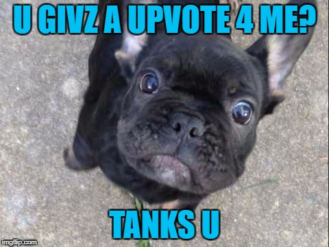 U GIVZ A UPVOTE 4 ME? TANKS U | made w/ Imgflip meme maker