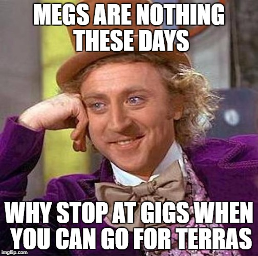 Creepy Condescending Wonka Meme | MEGS ARE NOTHING THESE DAYS WHY STOP AT GIGS WHEN YOU CAN GO FOR TERRAS | image tagged in memes,creepy condescending wonka | made w/ Imgflip meme maker