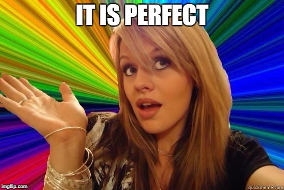 IT IS PERFECT | made w/ Imgflip meme maker