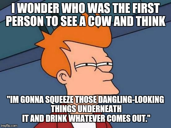 "Futurama Fry | I WONDER WHO WAS THE FIRST PERSON TO SEE A COW AND THINK ""IM GONNA SQUEEZE THOSE DANGLING-LOOKING THINGS UNDERNEATH IT AND DRINK WHATEVER CO 