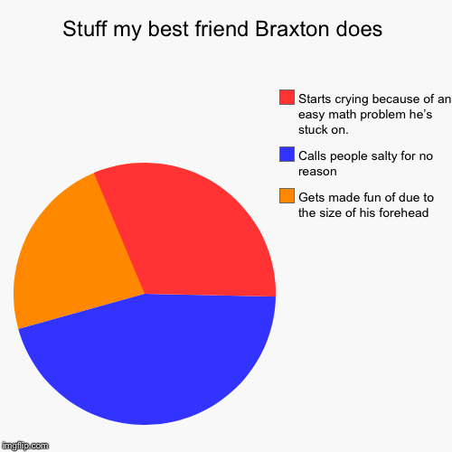 True story. | Stuff my best friend Braxton does | Gets made fun of due to the size of his forehead, Calls people salty for no reason, Starts crying becaus | image tagged in funny,pie charts,salty,forehead,true story | made w/ Imgflip pie chart maker