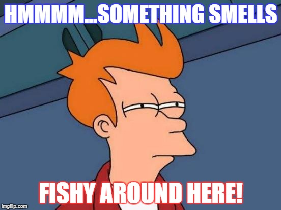 Futurama Fry Meme | HMMMM...SOMETHING SMELLS FISHY AROUND HERE! | image tagged in memes,futurama fry | made w/ Imgflip meme maker