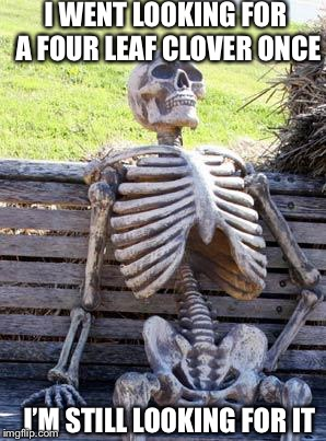 Waiting Skeleton Meme | I WENT LOOKING FOR A FOUR LEAF CLOVER ONCE I'M STILL LOOKING FOR IT | image tagged in memes,waiting skeleton | made w/ Imgflip meme maker