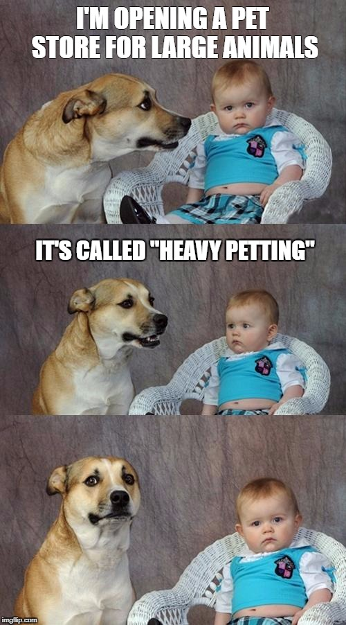 "Dad Joke Dog Meme | I'M OPENING A PET STORE FOR LARGE ANIMALS IT'S CALLED ""HEAVY PETTING"" 
