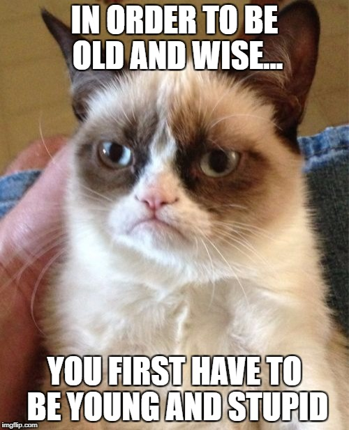Grumpy Cat Meme | IN ORDER TO BE OLD AND WISE... YOU FIRST HAVE TO BE YOUNG AND STUPID | image tagged in memes,grumpy cat | made w/ Imgflip meme maker