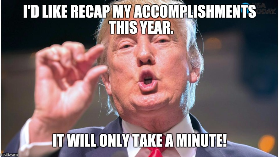 Donald Trump small brain | I'D LIKE RECAP MY ACCOMPLISHMENTS THIS YEAR. IT WILL ONLY TAKE A MINUTE! | image tagged in donald trump small brain | made w/ Imgflip meme maker