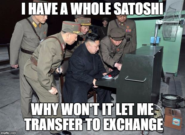Kim Jong Un Computer | I HAVE A WHOLE SATOSHI WHY WON'T IT LET ME TRANSFER TO EXCHANGE | image tagged in kim jong un computer | made w/ Imgflip meme maker