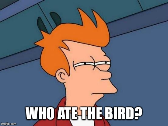 Futurama Fry Meme | WHO ATE THE BIRD? | image tagged in memes,futurama fry | made w/ Imgflip meme maker