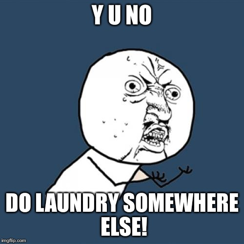 Y U No Meme | Y U NO DO LAUNDRY SOMEWHERE ELSE! | image tagged in memes,y u no | made w/ Imgflip meme maker