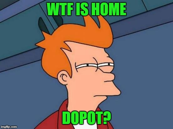 Futurama Fry Meme | WTF IS HOME DOPOT? | image tagged in memes,futurama fry | made w/ Imgflip meme maker