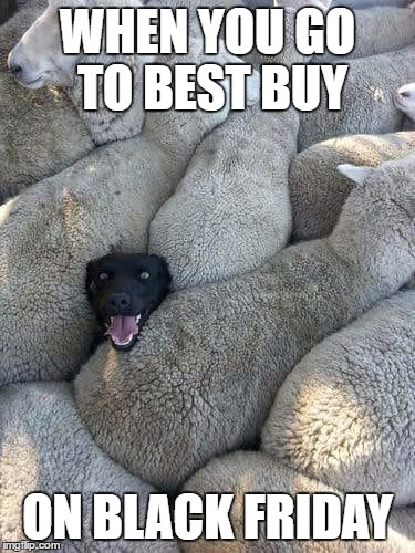 Yes i know that Black Friday is over but i wanted to still make this because Christmas is right around the corner | WHEN YOU GO TO BEST BUY ON BLACK FRIDAY | image tagged in dogs,memes,black friday,funny | made w/ Imgflip meme maker