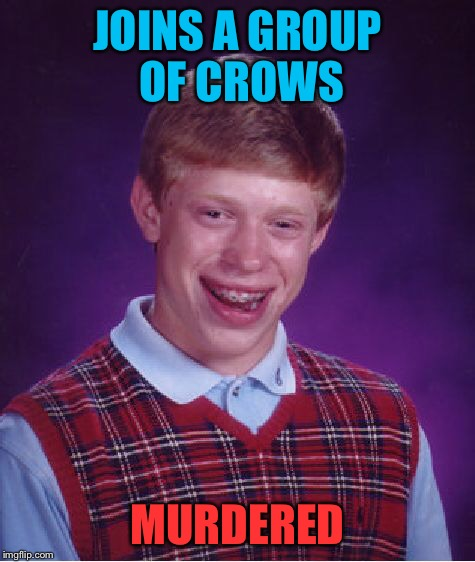 Bad Luck Brian Meme | JOINS A GROUP OF CROWS MURDERED | image tagged in memes,bad luck brian | made w/ Imgflip meme maker