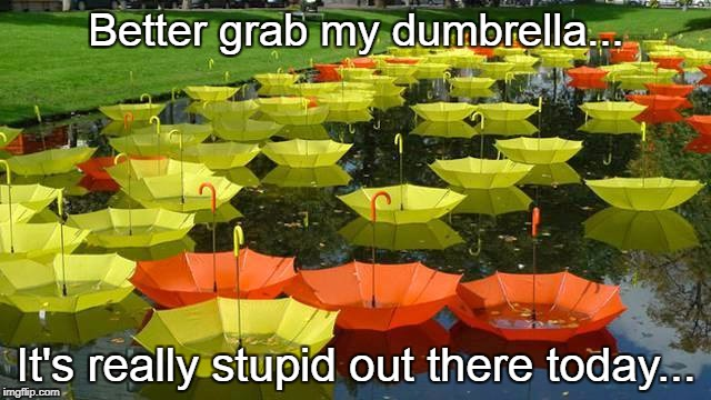 Better grab my dumbrella... It's really stupid out there today... | image tagged in dumbrella,stupid,today,grab | made w/ Imgflip meme maker