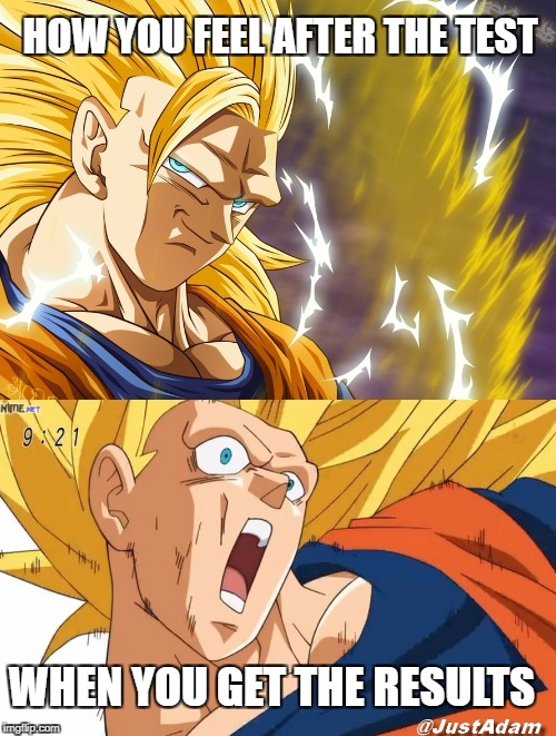 dragon ball super | HOW YOU FEEL AFTER THE TEST WHEN YOU GET THE RESULTS | image tagged in dragon ball super | made w/ Imgflip meme maker