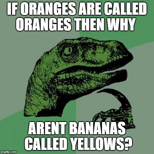 Philosoraptor Meme | IF ORANGES ARE CALLED ORANGES THEN WHY ARENT BANANAS CALLED YELLOWS? | image tagged in memes,philosoraptor | made w/ Imgflip meme maker