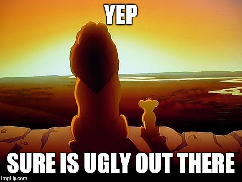 Lion King Meme | YEP SURE IS UGLY OUT THERE | image tagged in memes | made w/ Imgflip meme maker