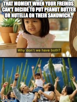 The Great Mediator | THAT MOMENT WHEN YOUR FREINDS CAN'T DECIDE TO PUT PEANUT BUTTER OR NUTELLA ON THEIR SANDWICH... | image tagged in memes,why not both | made w/ Imgflip meme maker
