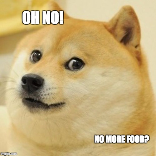 Doge Meme | OH NO! NO MORE FOOD? | image tagged in memes,doge | made w/ Imgflip meme maker