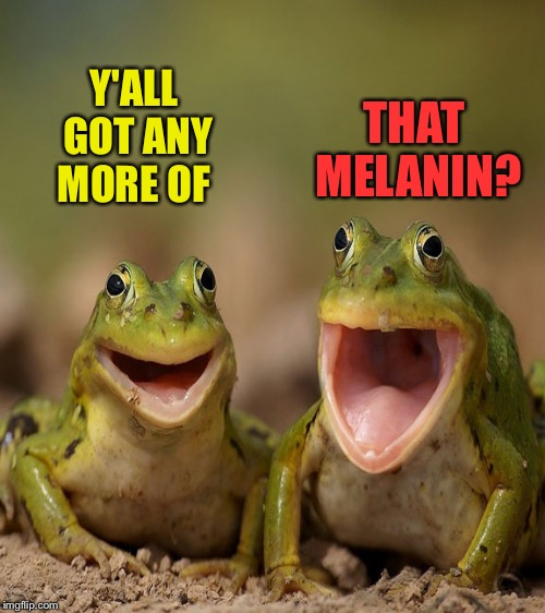 Y'ALL GOT ANY MORE OF THAT MELANIN? | made w/ Imgflip meme maker