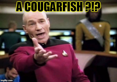 Picard Wtf Meme | A COUGARFISH ?!? | image tagged in memes,picard wtf | made w/ Imgflip meme maker