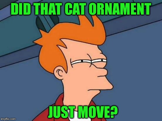 Futurama Fry Meme | DID THAT CAT ORNAMENT JUST MOVE? | image tagged in memes,futurama fry | made w/ Imgflip meme maker