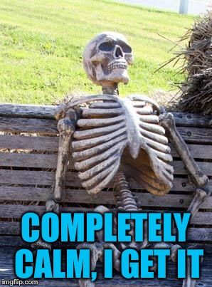 Waiting Skeleton Meme | COMPLETELY CALM, I GET IT | image tagged in memes,waiting skeleton | made w/ Imgflip meme maker