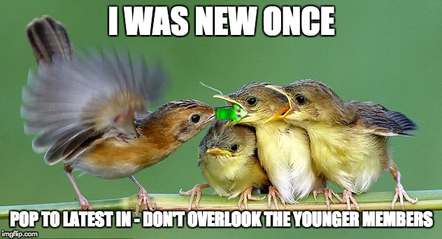 I was new once | I WAS NEW ONCE POP TO LATEST IN - DON'T OVERLOOK THE YOUNGER MEMBERS | image tagged in we all need to be noticed | made w/ Imgflip meme maker