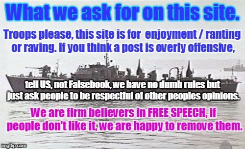 What we ask for on this site. Troops please, this site is for  enjoyment / ranting or raving. If you think a post is overly offensive, tell  | image tagged in falsebook site rules | made w/ Imgflip meme maker