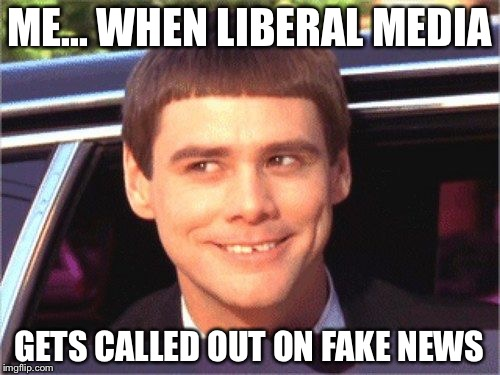 ME... WHEN LIBERAL MEDIA GETS CALLED OUT ON FAKE NEWS | image tagged in lloyd | made w/ Imgflip meme maker