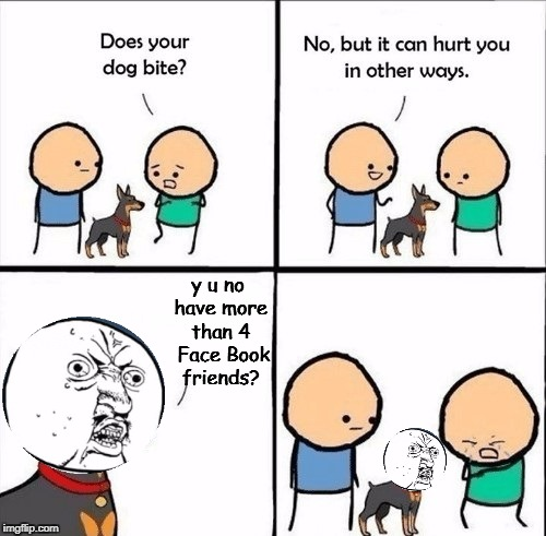 does your dog bite | y u no have more than 4  Face Book friends? | image tagged in does your dog bite,memes,meme,y u no,facebook | made w/ Imgflip meme maker