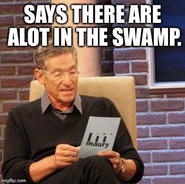 Maury Lie Detector Meme | SAYS THERE ARE ALOT IN THE SWAMP. | image tagged in memes,maury lie detector | made w/ Imgflip meme maker