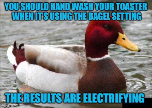 Malicious Advice Mallard | YOU SHOULD HAND WASH YOUR TOASTER WHEN IT'S USING THE BAGEL SETTING THE RESULTS ARE ELECTRIFYING | image tagged in memes,malicious advice mallard,americanpenguin | made w/ Imgflip meme maker