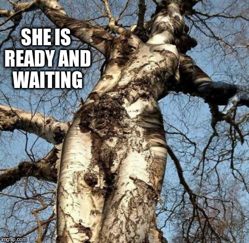SHE IS READY AND WAITING | made w/ Imgflip meme maker