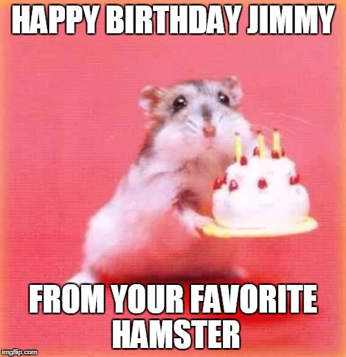 birthday hamster | HAPPY BIRTHDAY JIMMY FROM YOUR FAVORITE HAMSTER | image tagged in birthday hamster | made w/ Imgflip meme maker