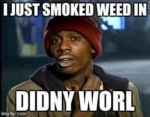 Y'all Got Any More Of That Meme | I JUST SMOKED WEED IN DIDNY WORL | image tagged in memes,yall got any more of | made w/ Imgflip meme maker